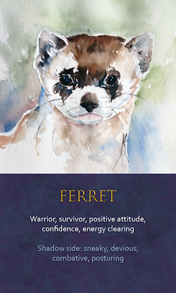 Ferret Spirit Animal Oracle Print