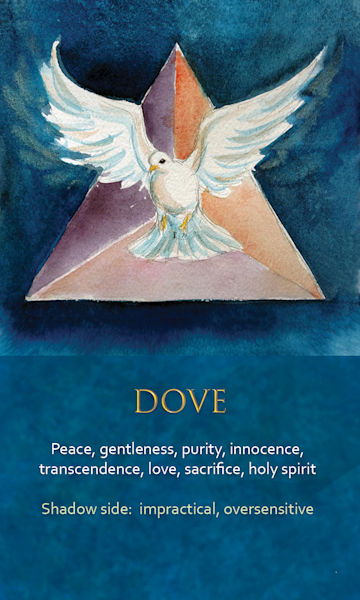 Dove Spirit Animal Oracle Print