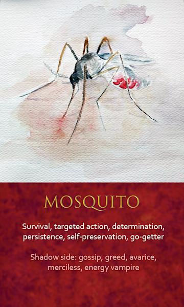 Mosquito Spirit Animal Oracle Print