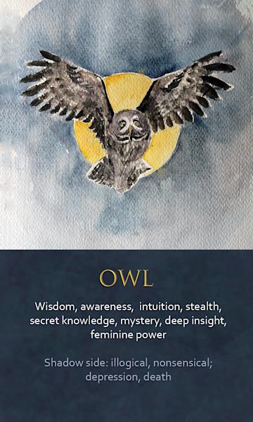 Owl Spirit Animal Oracle Print