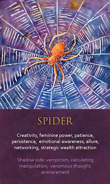 Spider Spirit Animal Oracle Print