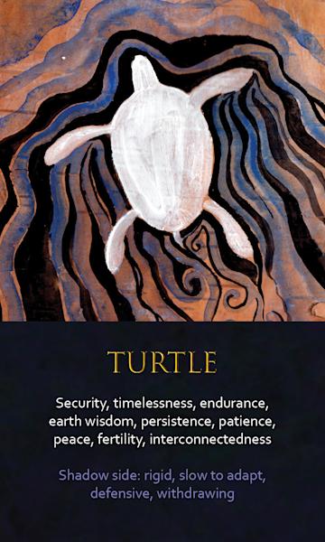 Turtle Spirit Animal Oracle Print