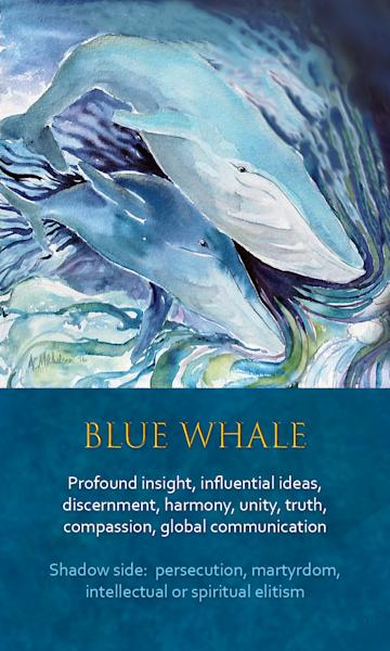 Whale Spirit Animal Oracle Print