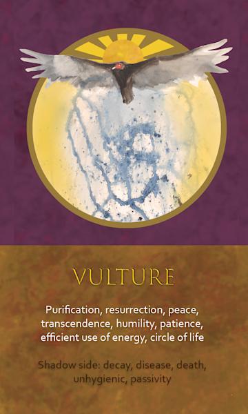 Vulture Spirit Animal Oracle Print