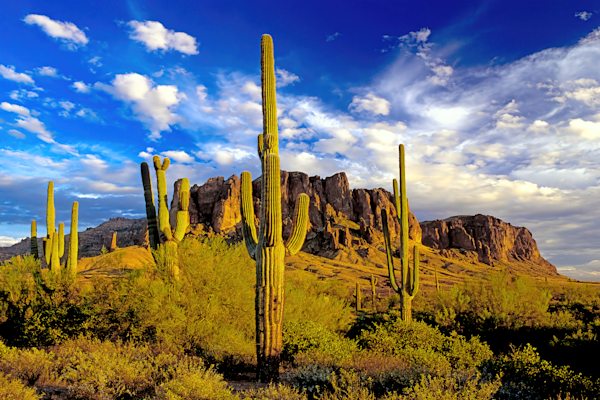 Sonoran Desert, Lost Dutchman's Gold Mine, Old West, Siphon Draw, Tonto National Forest, Flatiron, Peralta Trailhead, Arizona