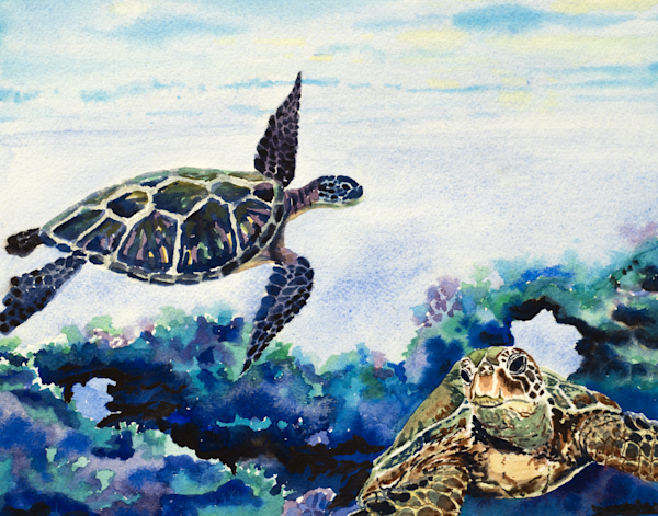 Hawaiian Honu Art for Sale