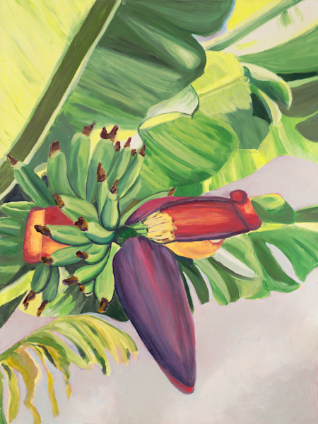 Banana Flower Art for Sale