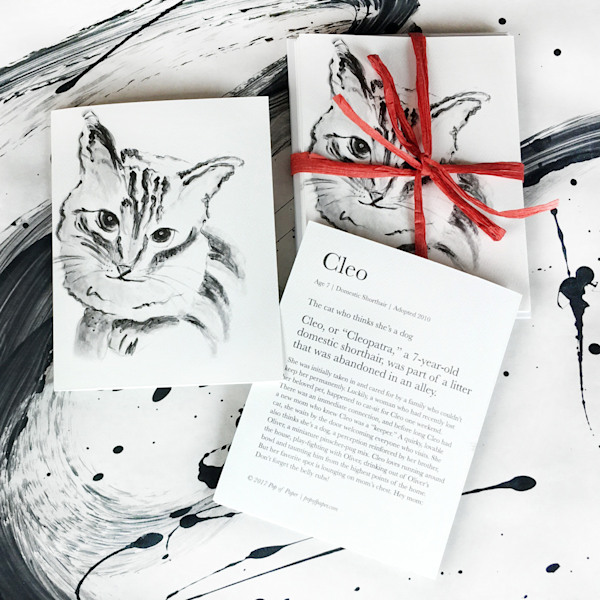 card, note card, cat card, domestic shorthair cat, animal lover cards, rescue cat