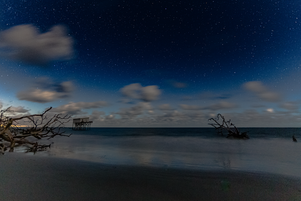 lil_blue_night
