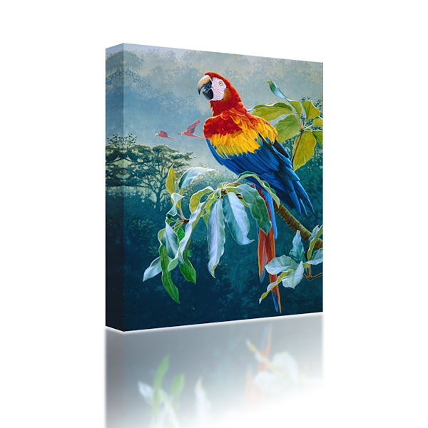 Parrot-on-a-Branch