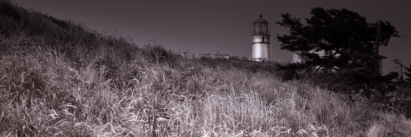 Print of Cape Blanco Lighthouse Over Sea of Grass