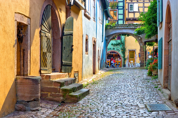 Alsatian vineyards,  Plain of Alsace, Wine Route, the Haut-Rhin department in Grand Est, Riquewhir, France