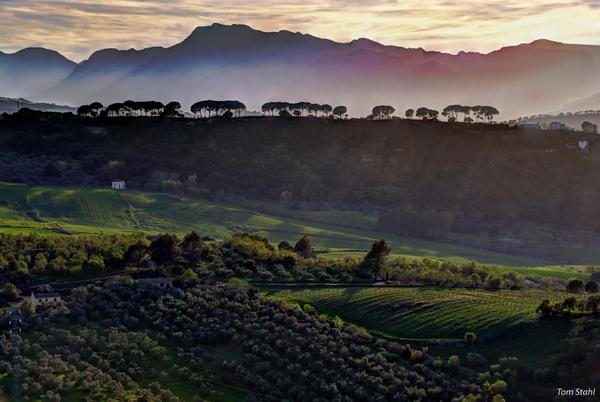 Hills outside Ronda, Spain, 2015.