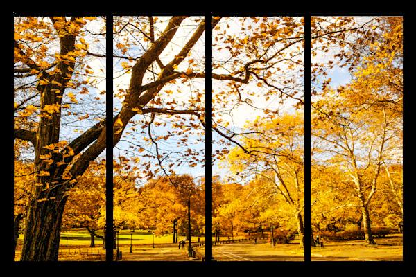 Four Piece Landscape Layouts