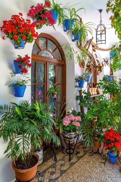 Fiesta de los Patios, World Heritage, Cordoba, Spain