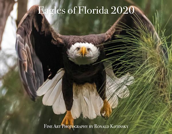 Florida  Eagles 2020 Calendar