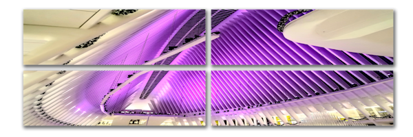 The Oculus