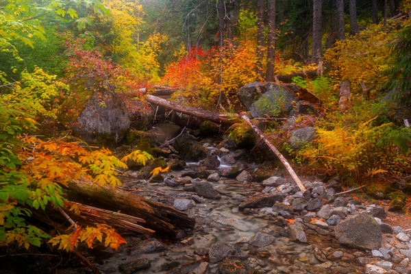 Tumble Creek Autumn Photography Art | Craig Primas Photography