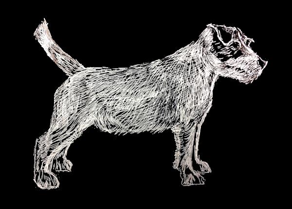 Jack Russell Terrier White On Black Art   Marie Stephens Art
