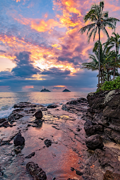 Art Prints:  Oahu Hawaii Kailua Bay and Mokes | Louis Cantillo