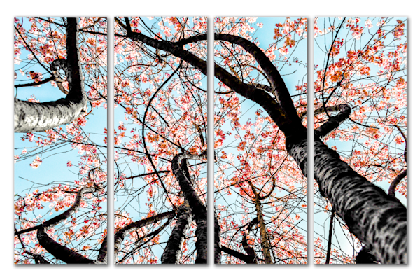 JRL Artistry | Art Inventory: Cherry Blossom Tree | Quality Is Our Art