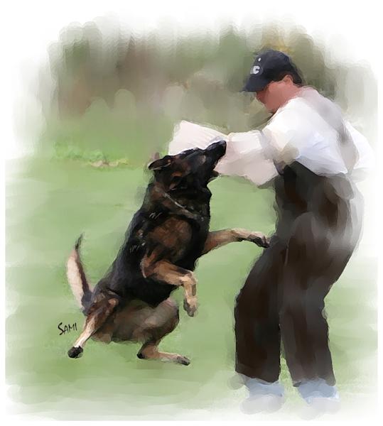 Schuzund German Shepherd Off the Ground Art – Original Paintings – Fine Art Prints on Canvas, Paper, Metal & More by Susie Myers