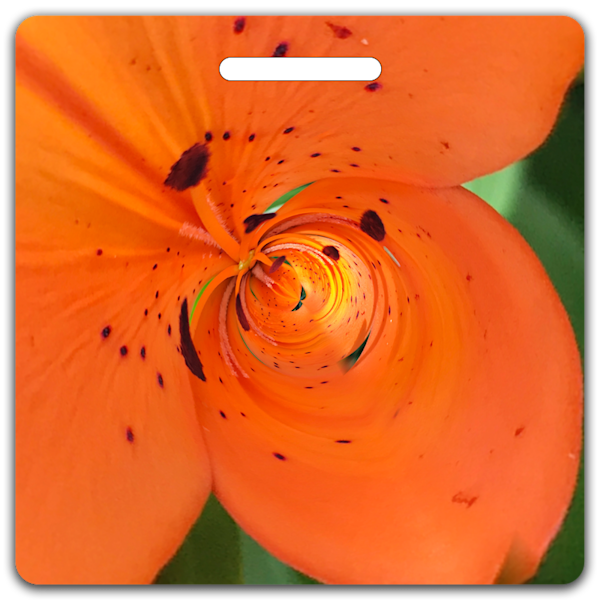 Asiatic Lily- Bag Tag