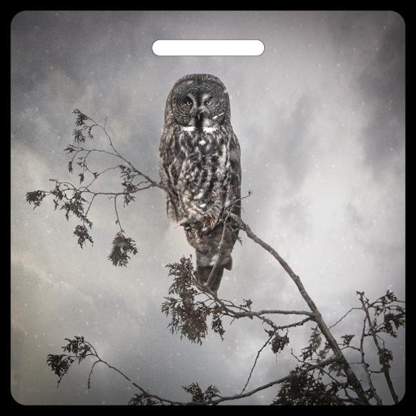 Great Gray Owl- Bag Tag