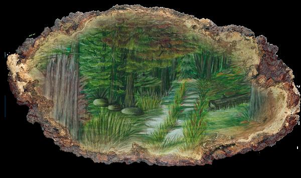 """Deep Woods Trail"" Pf | Inkdrop Gallery"