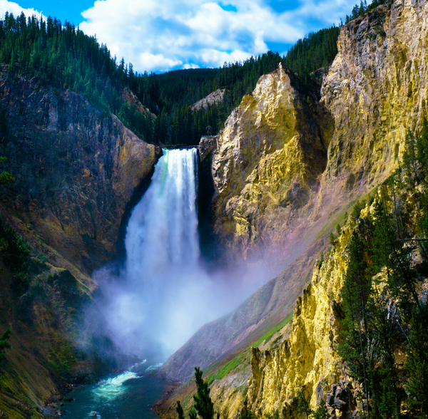 Fine Art Print of the Lower Falls of the Yellowstone