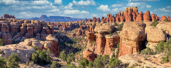Art Print Needles District Canyonlands National Park Utah Colorful Spires