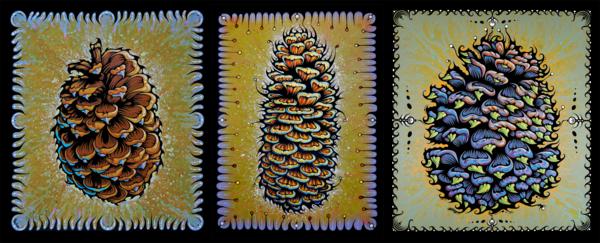 Pine Cone Series Art   Benko Art Gallery