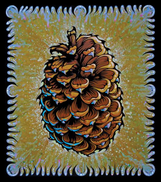 Jeffery Pine Cone Print