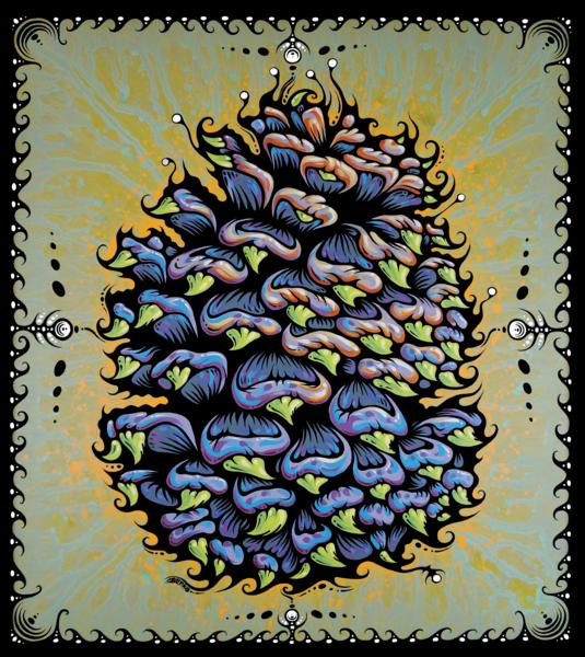 Ponderosa Pine Cone Print