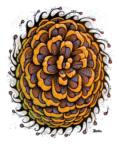 Pine Cone Top View Print