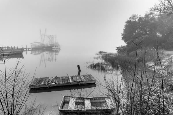 fishcamp_fog