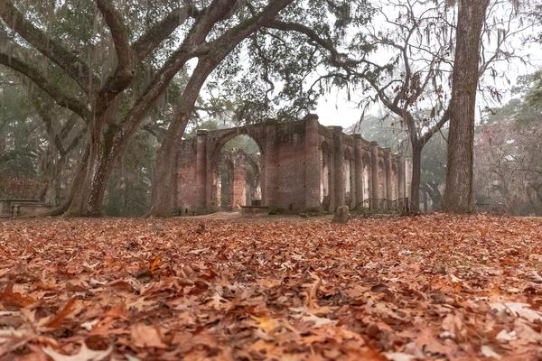 old_sheldon_church_in_the_fall