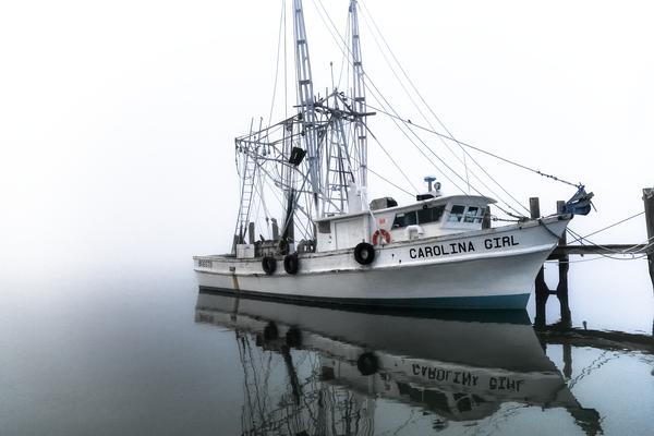 bluesy_morning_fog