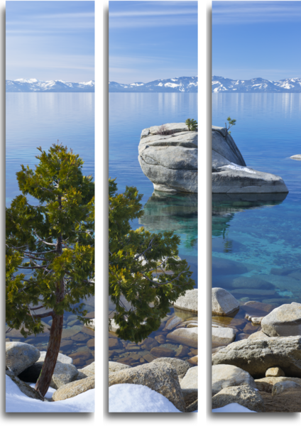 Bonsai Rock Triptych