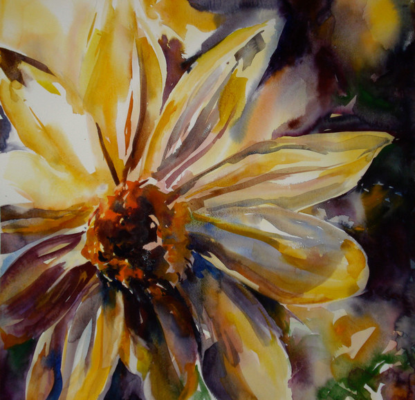 Arnica Flower | Karen Bishop Artist