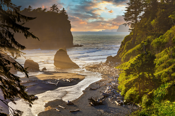 Art Print Ruby Beach Washington Abbey Island