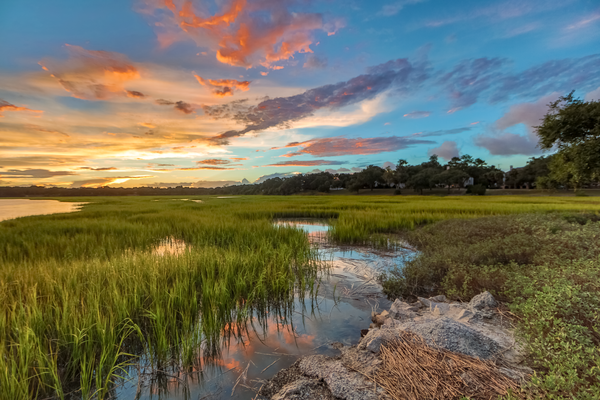 beaufort_marsh_sunset