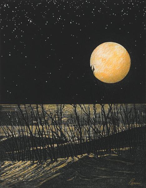 Wild Dunes  Art | Patrick M. Parise