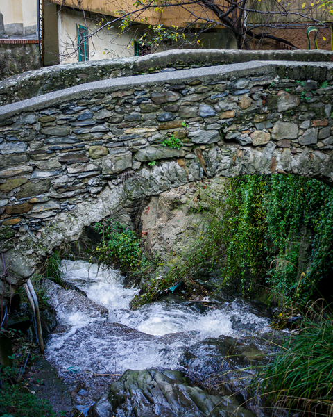 Cinque Terre Bridge Photography Art | Happy Hogtor Photography