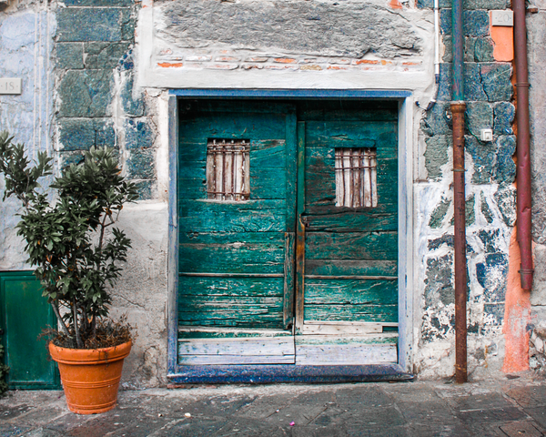 Green Door In Monterosso Photography Art | Happy Hogtor Photography