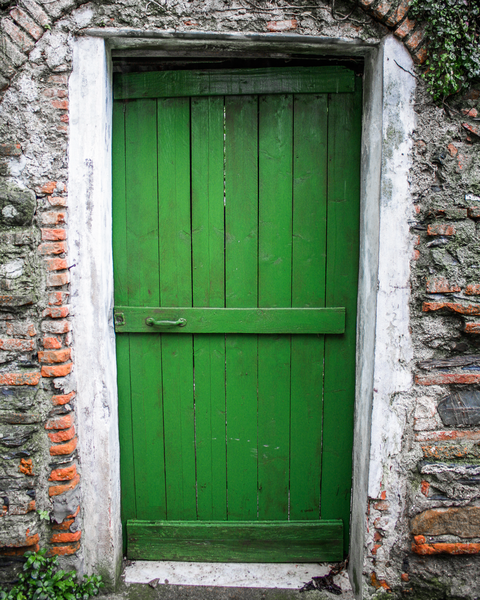 Doors Of Italy  Green Photography Art | Happy Hogtor Photography
