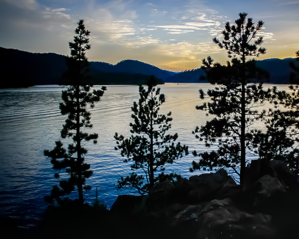 Pondering Perfection Photography Art | Happy Hogtor Photography