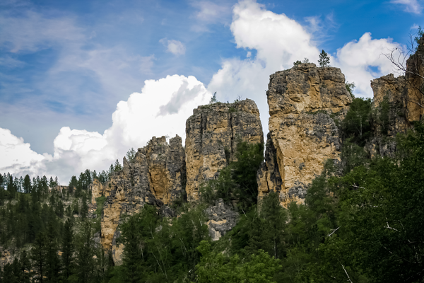 Peaks At Custer Photography Art | Happy Hogtor Photography
