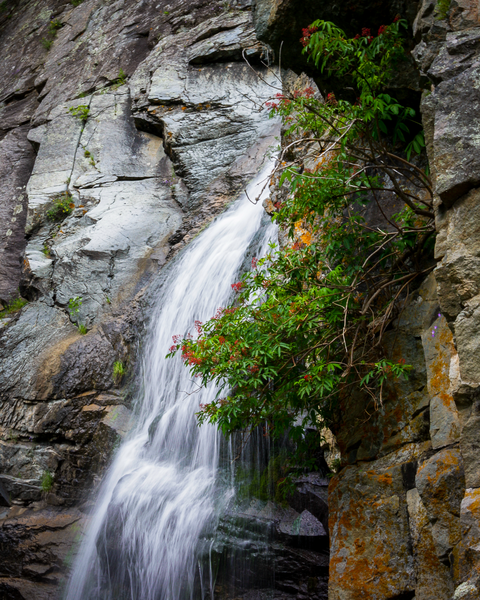 Bridal Veil Falls Colors In Orange Photography Art | Happy Hogtor Photography