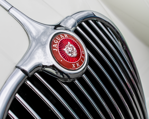 Xk150 Jaguar Hood Ornament Photography Art | Happy Hogtor Photography